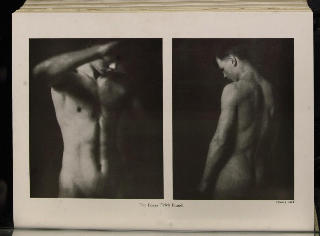 Der Boxer Erich Brandl, aus: Der Querschnitt, Band-/Heftnummer 5.1925, H.9, September 1925 (Foto: Rieß)